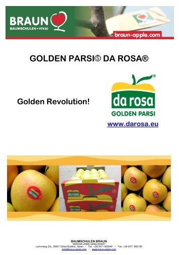 GOLDEN PARSI DA ROSA® - KIKU