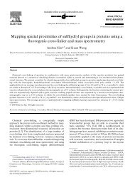Mapping spatial proximities of sulfhydryl groups in proteins using a ...