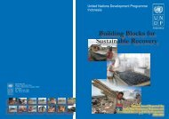 Building Blocks for Sustainable Recovery - UNDP