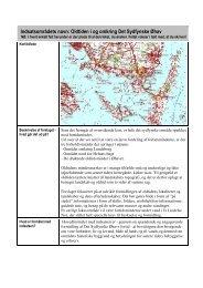 Indsatsområdets navn: Oldtiden i og omkring Det Sydfynske Øhav