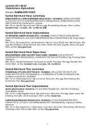 resultat i .pdf med kritik