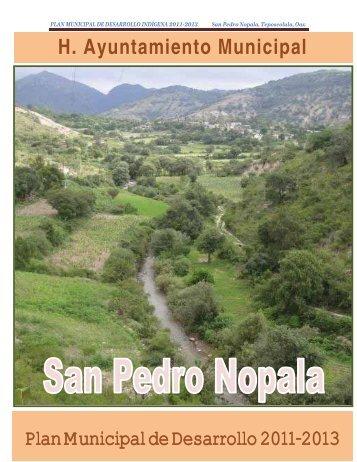 PLAN MUNICIPAL DE DESARROLLO INDÍGENA San Pedro ...