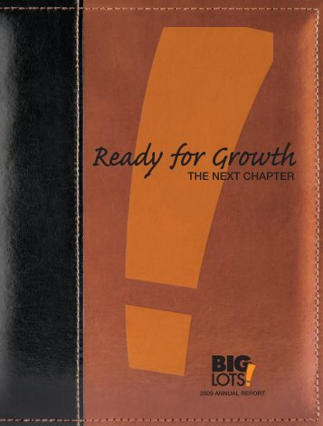 2009 Annual Report - Big Lots