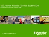 SE's roadmap to secure solutions, Oscar ... - Schneider Electric