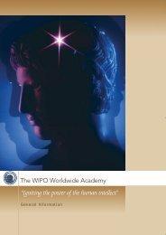 The WIPO Worldwide Academy
