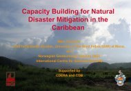 Disaster Mitigation Demonstration Projects - NGI