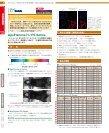 染色体,アポトーシス,幹細胞などを検出! - フナコシ - Page 6