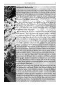 Sommer 2o12 - St. Rupert - Seite 5
