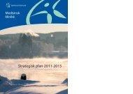 MÃ¥l og strategidokument 2011 - 2014 - Sykehuset Telemark