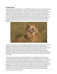 Laikipia Predator Project - Living with Lions - Page 3