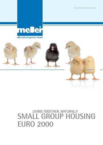 SMALL GROUP HOUSING EURO 2000 - Meller.net