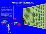 CO8: Concepts & outils en neurophilosophie - Andrei Gorea