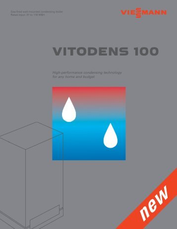 VITODENS 100