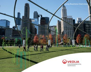2009 Business Overview - Veolia Finance - Veolia Environnement