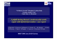 A pitfall during thoracic enodovascular aortic repair with hybrid ...