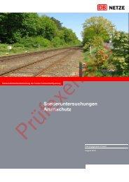 Sonderuntersuchungen Artenschutz - Dialogforum Feste ...