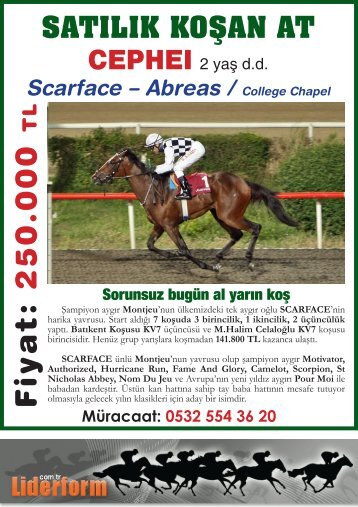 Scarface – Abreas / College Chapel - LiderForm