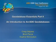 What is the Geodatabase?