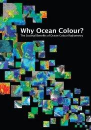 Why Ocean Colour brochure - ioccg