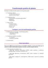 Transformação genética de plantas - Instituto de Biologia da UFRJ
