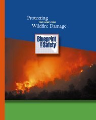 Wildfire Brochure - Florida Alliance for Safe Homes