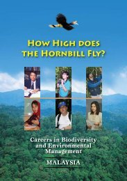 HOw HIGH DOEs THE HORNbILL FLY? - WWF Malaysia