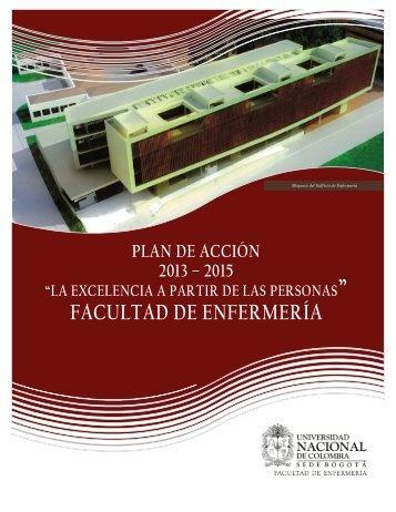 plan de acción 2013 - 2015 - Facultad de Enfermería - Universidad ...
