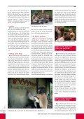 Zurück in die Steinzeit - Planet Schule - Seite 4