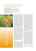 Boletin 8 MR 15 10 12 - Page 2