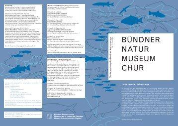 Ausgabe Nr. 45 Juni 2013 - Bündner Naturmuseum - Kanton ...