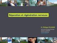 Réparation et régénération nerveuse - e-plastic.fr