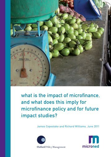 what is the impact of microfinance, and what does this imply for ...