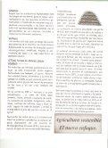Page 1 Page 2 INTRODUCCION . Aunque la historia del compost ... - Page 3