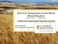 World Wheat Production, Use and Trade