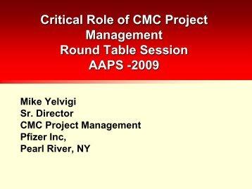 Critical Role of CMC Project Management