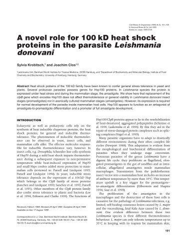 A novel role for 100kD heat shock proteins in the parasite ...