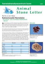 Kalziumoxalat-Harnsteine