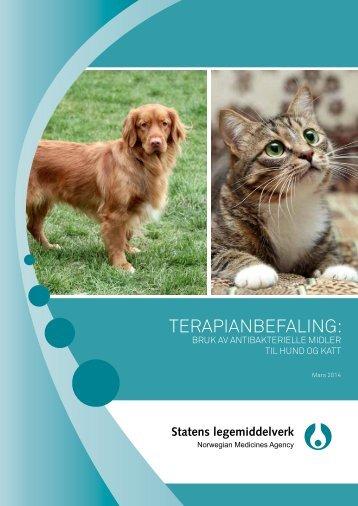 Terapianbefaling_Antibakterielle midler hund og katt_2014_N