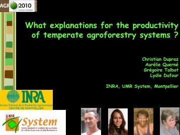 What explanations for the productivity of temperate agroforestry ...