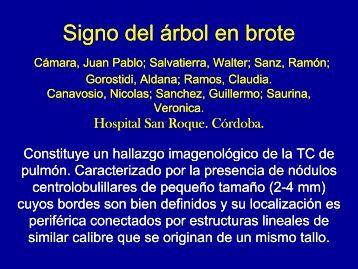 Signo del árbol en brote - Congreso SORDIC
