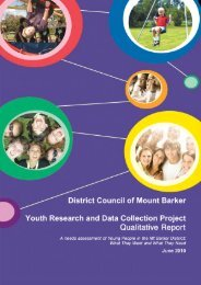 Youth Research Qualitative Report - District Council of Mount Barker