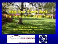 Help Your Plants Beat The Stress Of Urban Care - Aggie Horticulture