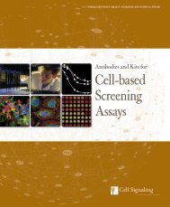 Cell-based Screening Assays - Ozyme