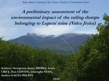 A preliminary assesment of the environmental impact of the tailings ...
