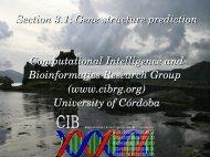 K - Computational Intelligence and Bioinformatics Research Group