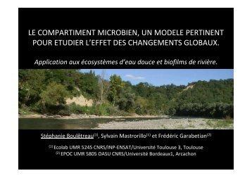 Le compartiment microbien, un modèle pertinent pour étudier l'effet ...
