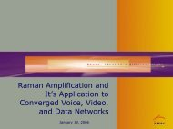 Raman Amplification and Its Application to ... - Cvt-dallas.org
