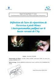 (Austropotamobius pallipes - Les documents techniques sur l'eau