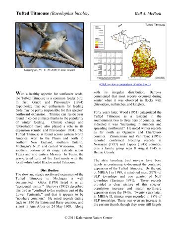 Tufted Titmouse - Michigan Breeding Bird Atlas Website