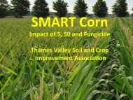 Impact of 5, 50 and Fungicide - Ontario Soil and Crop Improvement ...